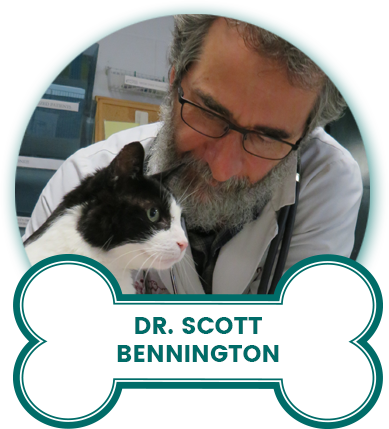 Dr. Scott Bennington